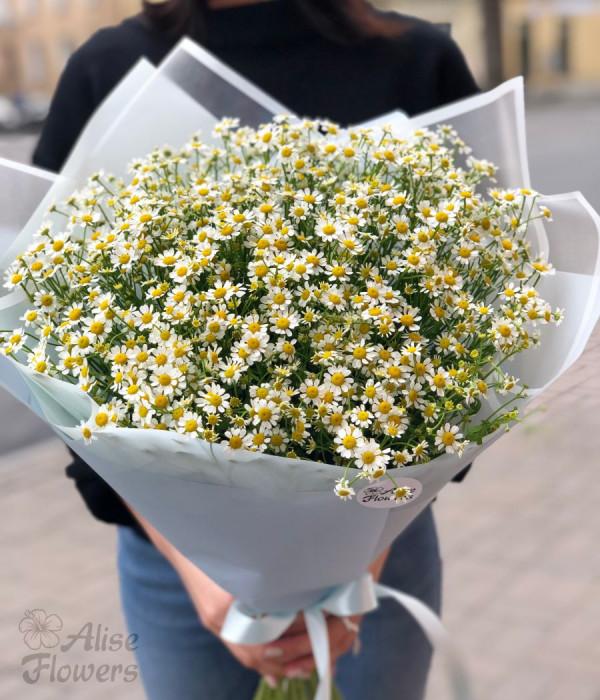 заказать Букет из ромашек весенний в Петербурге