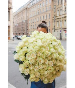 """Букет из 51 розы """"Mondial"""" (Крупный бутон)"""